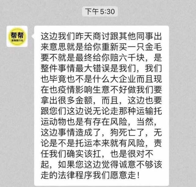 金毛Siri死亡后续:金毛托运途中死亡市监部门介入