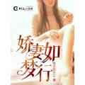 娇妻如梦行 七猫小说