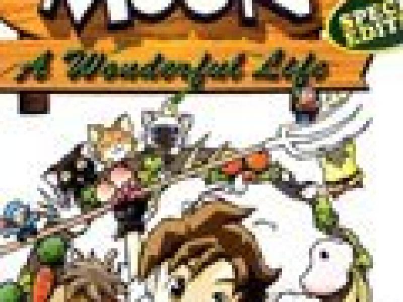 牧场物语:美丽人生特别版 PC版