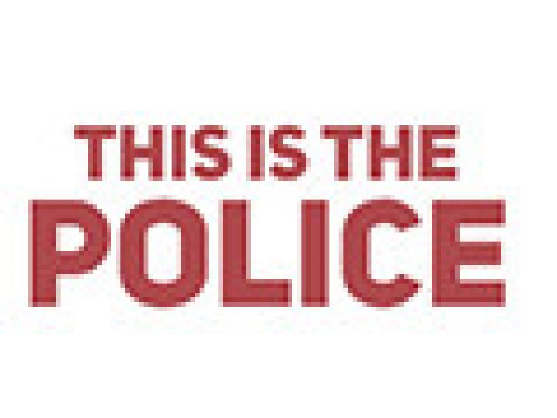 这是警察 v1.0.43汉化版