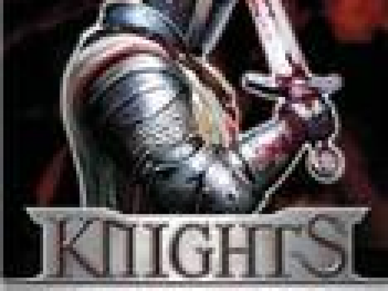 圣堂骑士团2 硬盘版