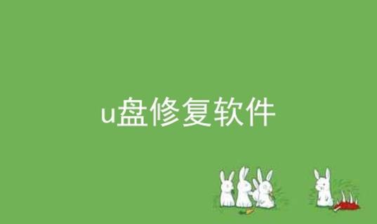 u盘修复软件软件合辑