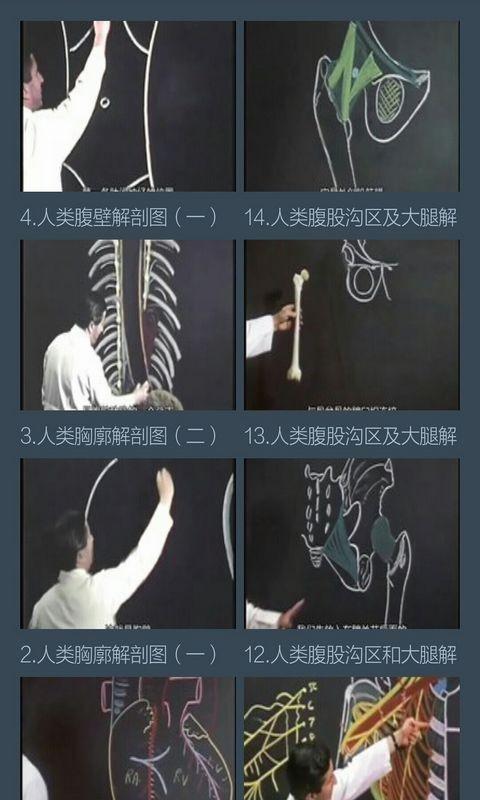 解剖学知识软件截图3