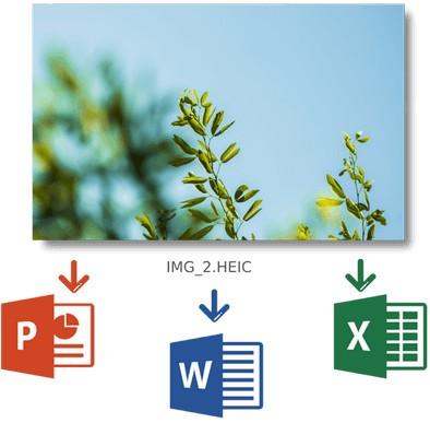 CopyTrans HEIC(HEIC图像查看工具)下载
