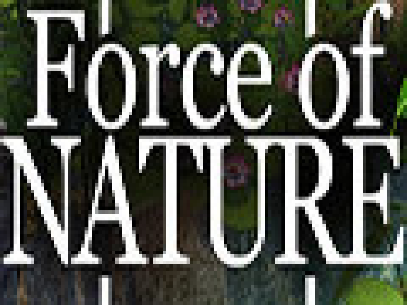 Force of Nature 联机