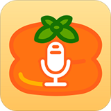 柿子定时录音