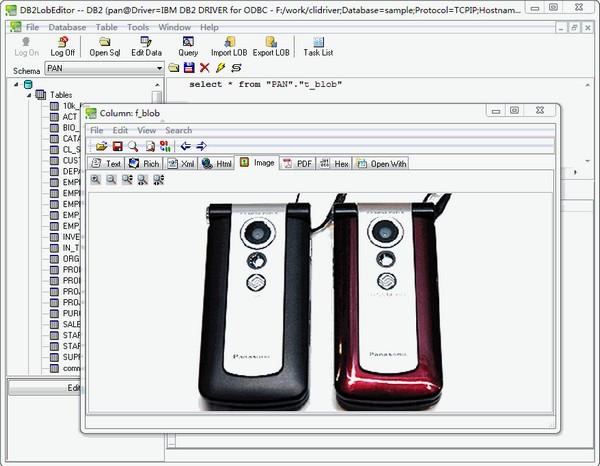 DB2LobEditor(db2数据库编辑工具)