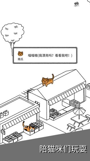 猫咪真的很可爱软件截图2