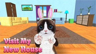 猫咪模拟器软件截图2