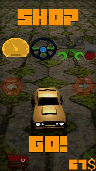 高速公路无尽的警察软件截图1