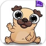 我的宠物狗狗帕格