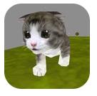 可爱小猫酷跑