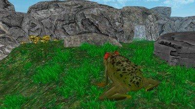 雨林青蛙生存模拟软件截图2