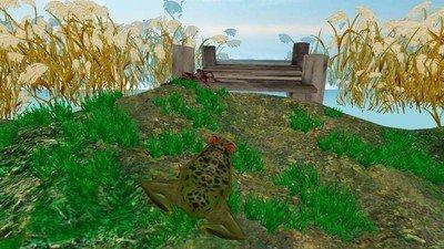 雨林青蛙生存模拟软件截图1