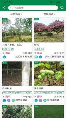 中州花木网