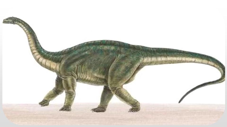 《飞向蓝天的恐龙》PPT(第1课时)下载