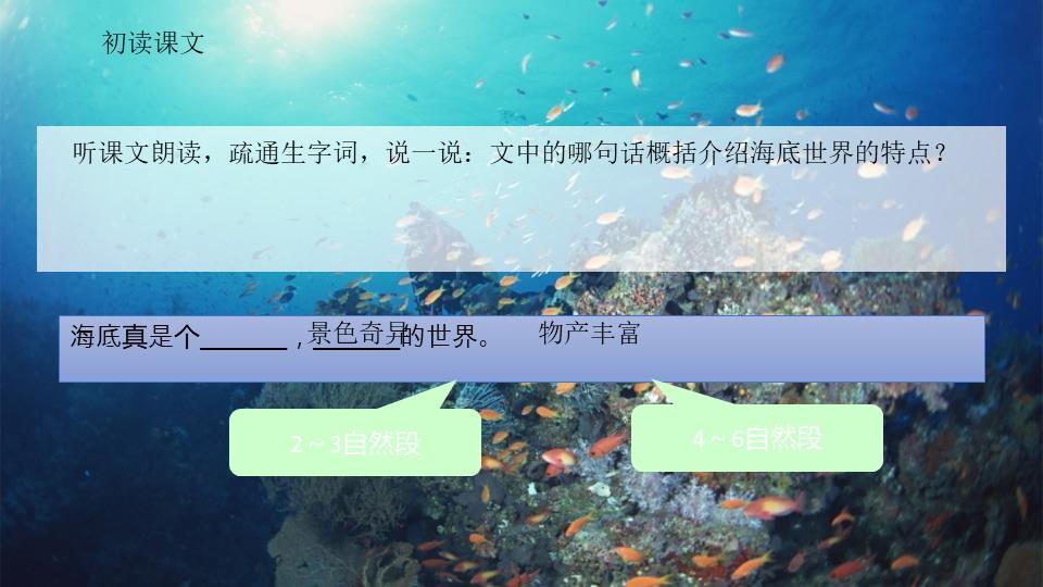 《海底世界》PPT精品课件下载