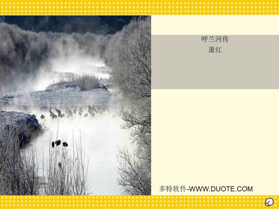 《呼兰河传》PPT课件下载