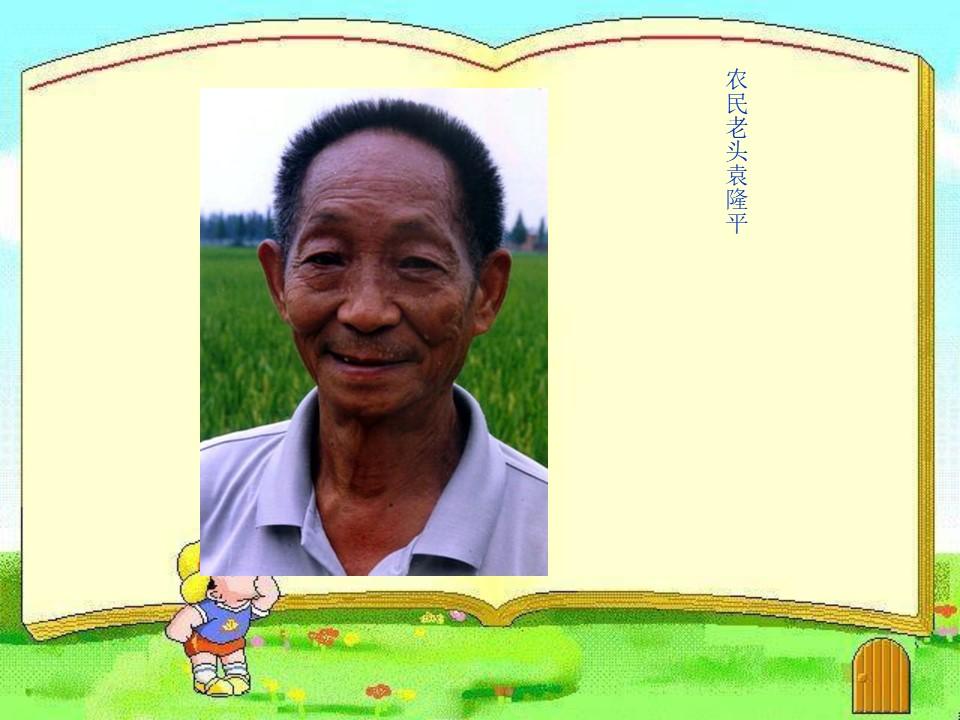 《杂交水稻之父》PPT课件下载