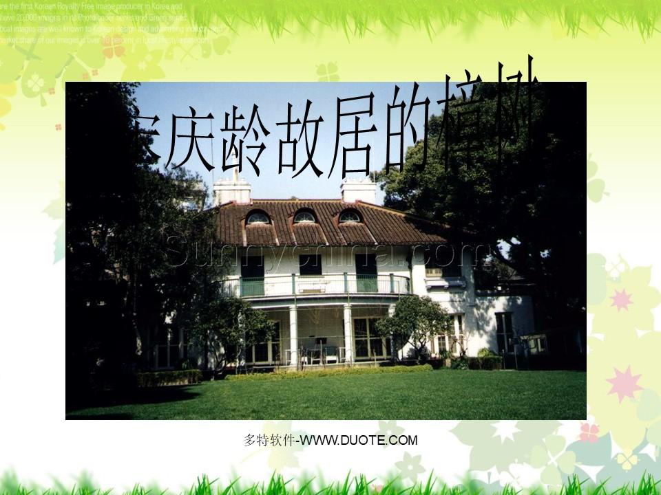 《宋庆龄故居的樟树》PPT课件下载