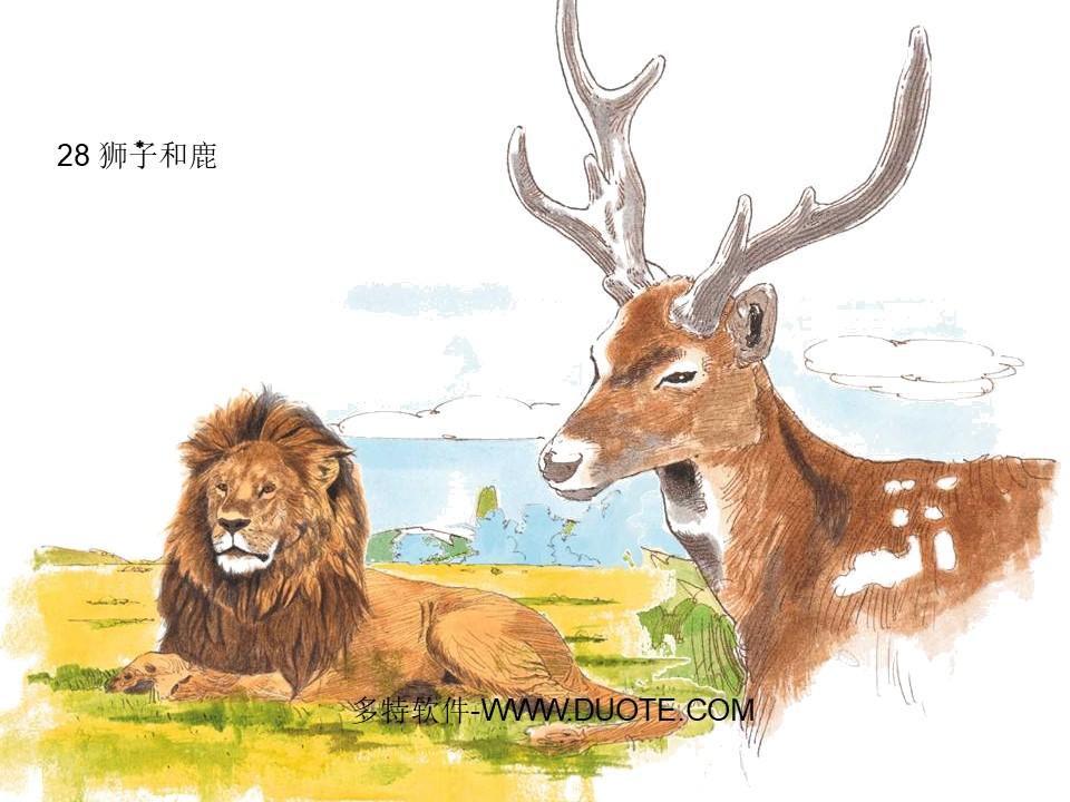 《狮子和鹿》PPT教学课件下载4下载