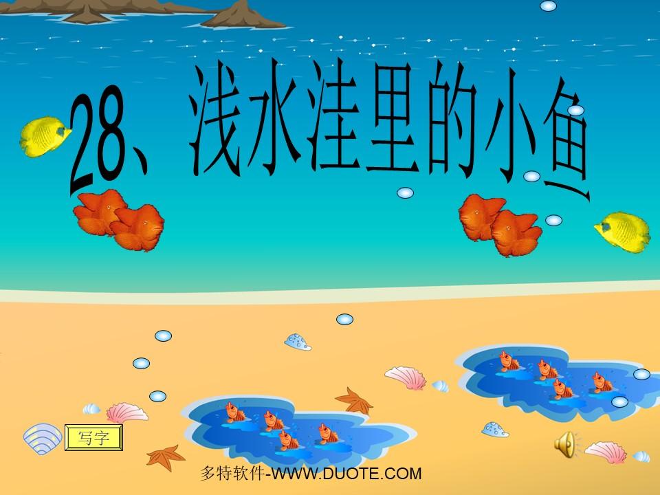 《浅水洼里的小鱼》PPT教学课件下载4下载