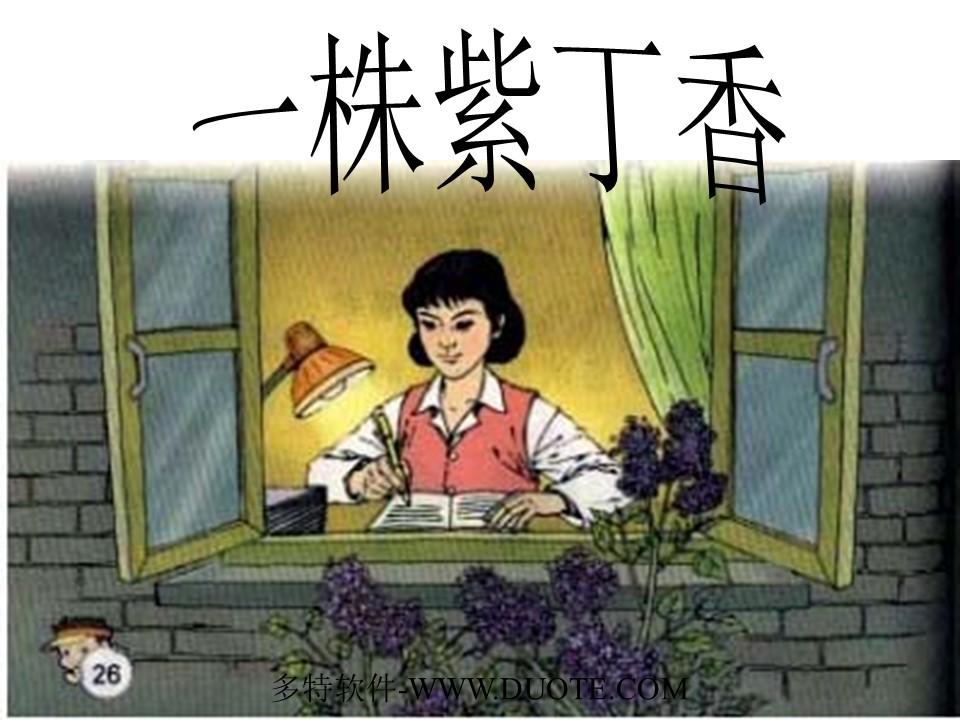 《一株紫丁香》PPT教学课件下载3下载