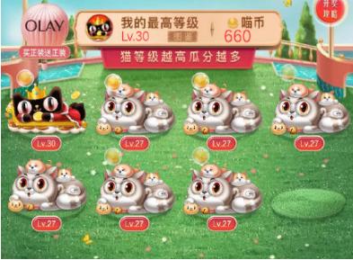 2019天猫618理想猫最高是多少级?