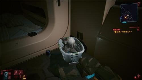 赛博朋克2077养猫方法教程说明