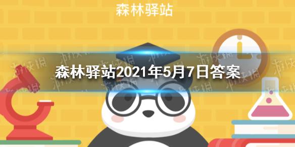 """老河沟保护区物种资源丰富,其中被称作""""中国的鸽子树""""的珍稀植物是 森林驿站2021年5月7日答案"""
