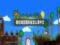泰拉瑞亚国际版中文设置方法