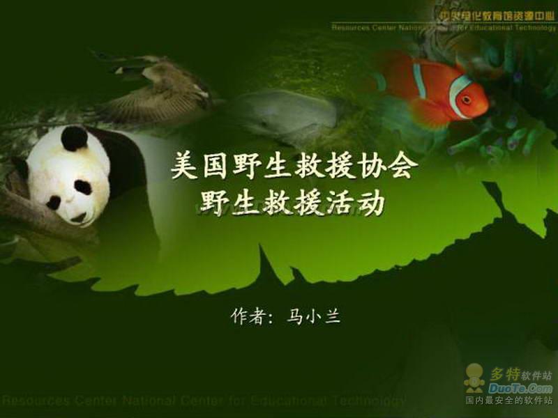 保护动物PPT模板下载