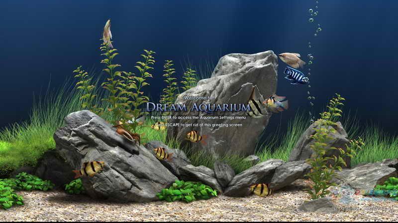 Dream Aquarium(梦幻水族馆)下载