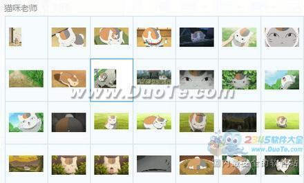 猫咪老师表情包下载