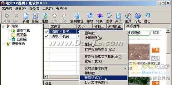 把网络视频搬回家:维棠FLV下载