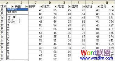 WPS表格自动筛选统计学生成绩