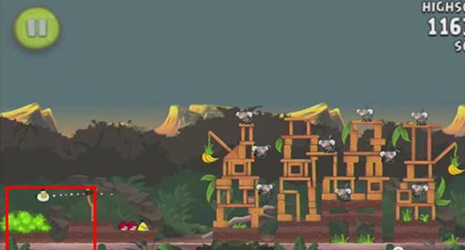 《愤怒的小鸟Rio》15颗金色香蕉的秘密