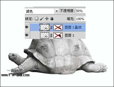 ps设计实例-制作生态海报