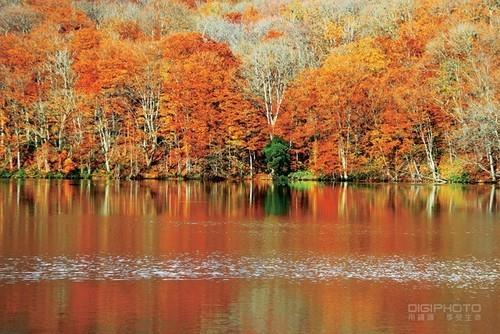 如何利用光线与构图拍出不一样的湖边美景