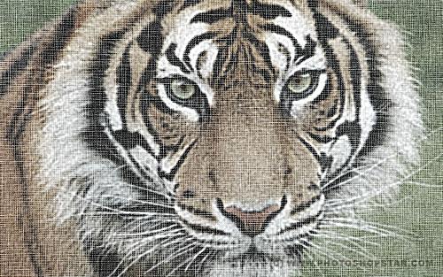 ps滤镜-为照片添加粗布纹效果