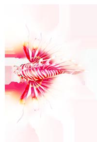 《捕鱼达人2》狮子鱼介绍及打法攻略