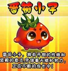 《燃烧的蔬菜》角色一览介绍