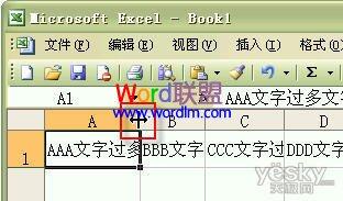 如何设置Excel2003单元格输入文字后自动调整合适行高和列宽?